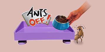 Ants Off